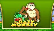 Игровой автомат Crazy Monkey бесплатно онлайн
